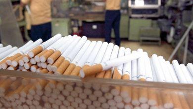 Photo de Tabacs bruts et tabacs manufacturés: un projet de loi approuvé