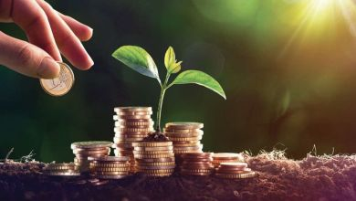 Photo de Investissements : BAD & BEI, main dans la main pour l'Afrique
