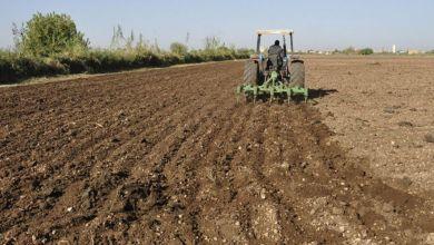 Photo de Campagne agricole 2020-2021: où en est-on après les pluies ?