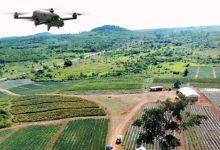 Photo de Caractérisation des sols : l'OCP table sur 20 millions ha supplémentaires d'ici 2026