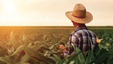 """Photo de Entrepreneuriat agricole : le déploiement de """"Génération Green"""" va bon train"""