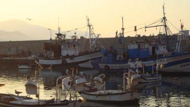 """Photo de Produits de la pêche : l'initiative """"BlueEconomy"""" débarque au Maroc"""