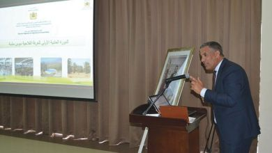 Photo de Souss-Massa : le Plan agricole régional double son portefeuille de projets