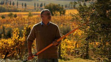 Photo de Moulay Yaacoub/agriculture : une demande soutenue pour les subventions du FDA