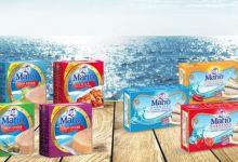 Photo de Silver Food et filiales : Anouar Invest reprend-il la main ?