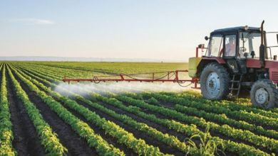 Photo de AFD : Génération Green bénéficie d'un soutien de 1,5 MMDH