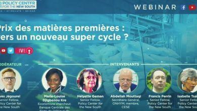 Photo de Matières premières : peut-on parler de super cycle ?