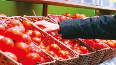 Photo de Accord agricole : les producteurs espagnols veulent une révision des quotas marocains