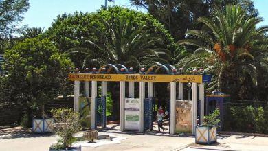 Photo de Agadir : la vallée des oiseaux bientôt réhabilitée