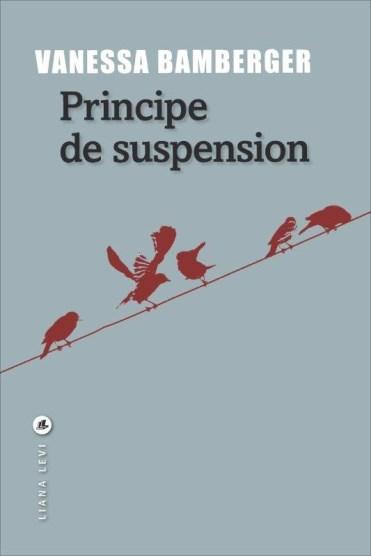 ob_589e96_principe-de-suspension