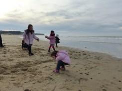 Balade sur la plage ...
