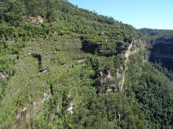 blue mountains0010