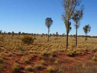 désert (3)