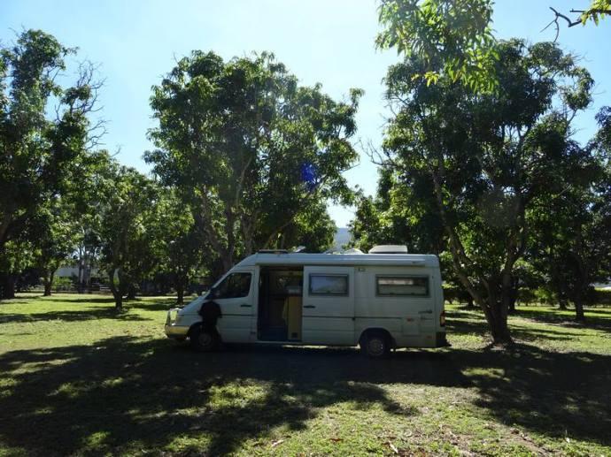 airlie et manguiers0003