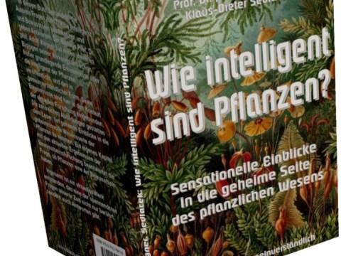 Wie intelligent sind Pflanzen?