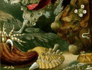 Tierleben der Tiefsee