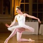 Spectacle de danseuse classique pour vos événements