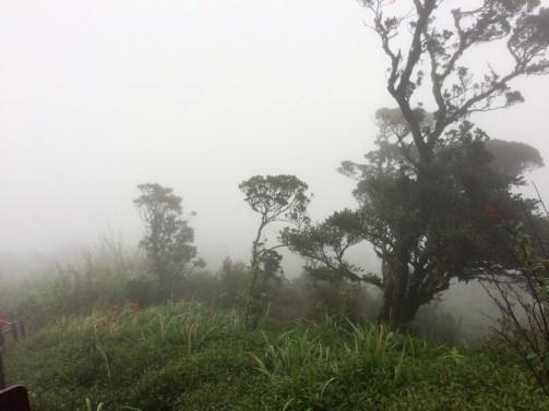brume de l'adam's peak au sri lanka