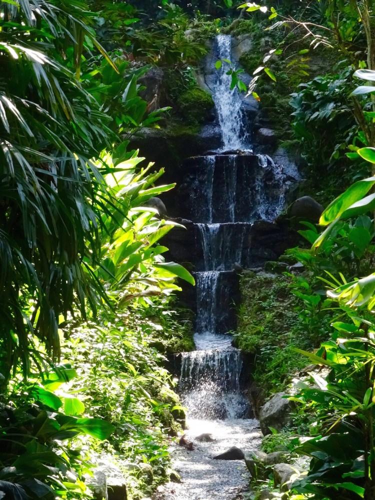 jardin-botanic-rio-cascade