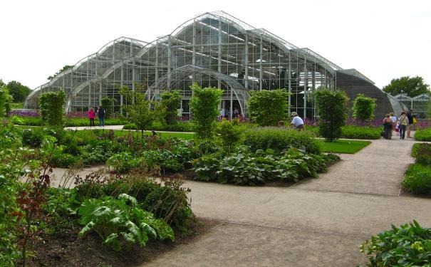 jardin-botanique-amsterdam