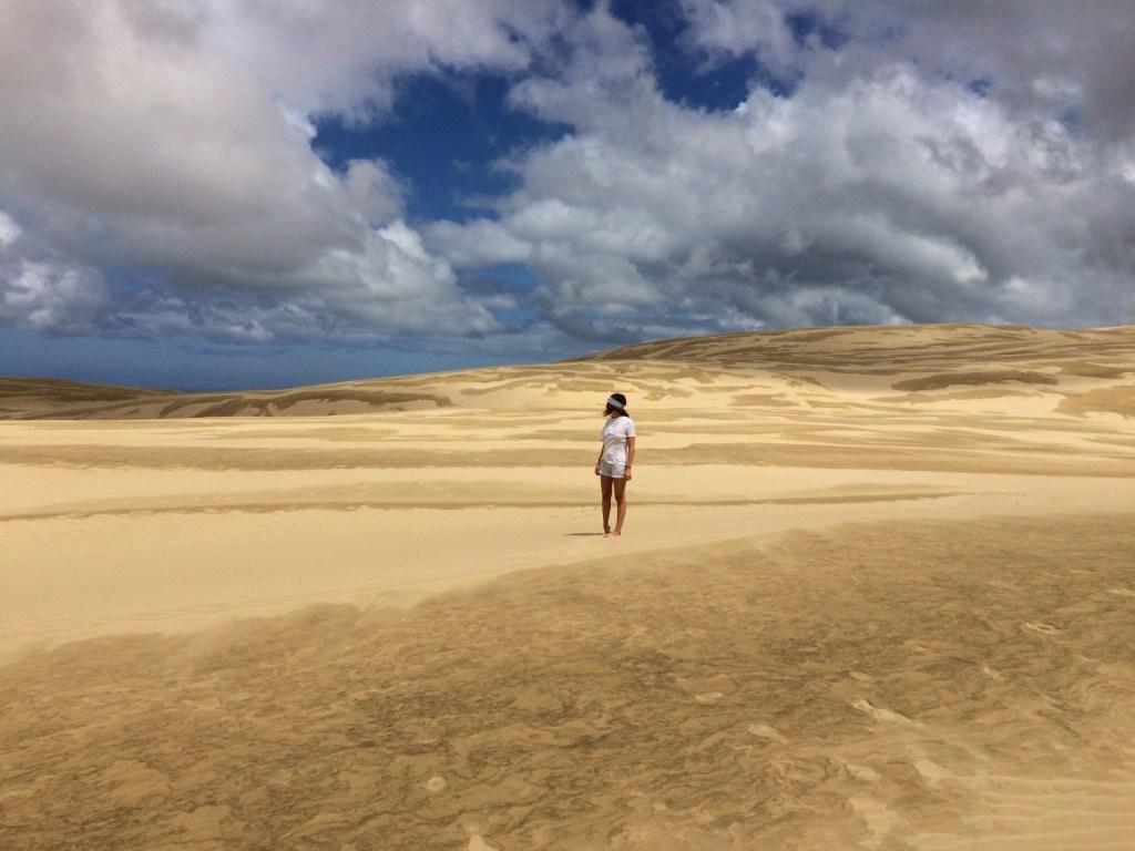 dunes sur l'île du nord de nouvelle-zélande