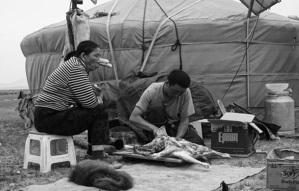 mongolie-famille-nomade-homme-depeuce-bete