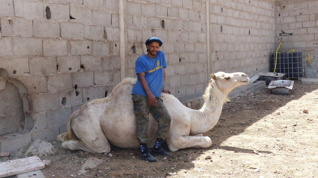 marche-chameau