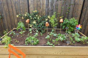 jardin dans les puces de saint-ouen