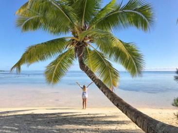 moorea-palmiers-tipaniers