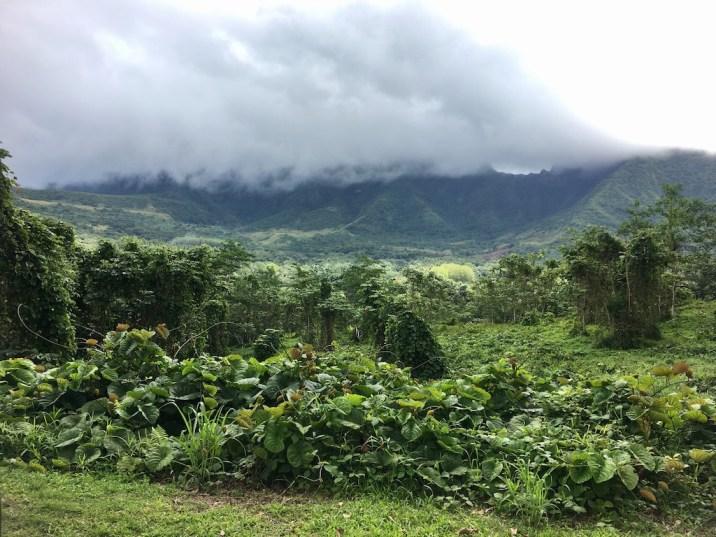 raiatea-montagne-sacree-nuages-tiare-apetahi