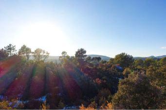 dracenie-paysages-voiture-sunset