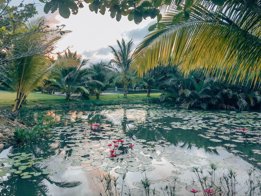 vietnam-airlines-hotel-poulo-condor-archipel