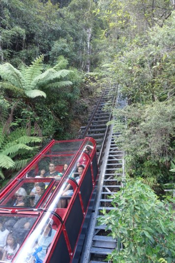 australie-sydney-blue-mountains-scenic-view-train