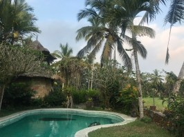voyage-a-bali-ubud-saudara-home-piscine