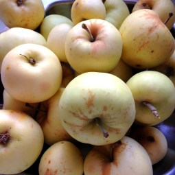 Crumble aux Pommes, recette, les foodeuses