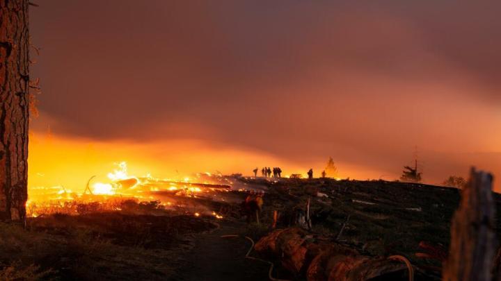 Des feux ravagent les quartiers chics de Los Angeles. Le Consulat et les élus mobilisés