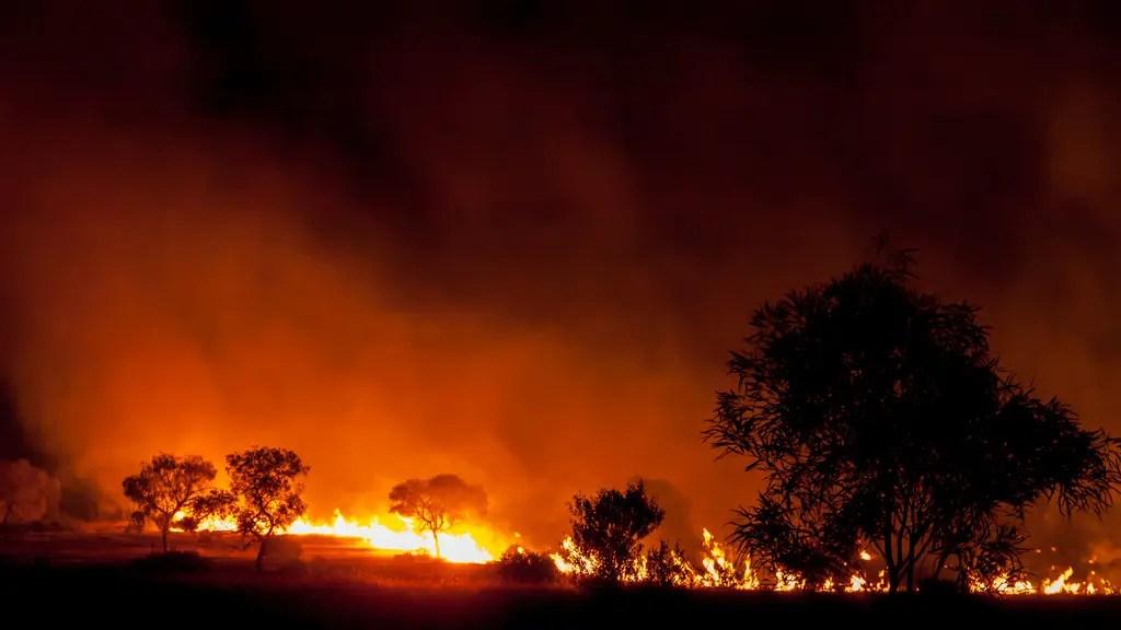 Incendies en Australie: le drame sans fin – la parole aux Français d'Australie