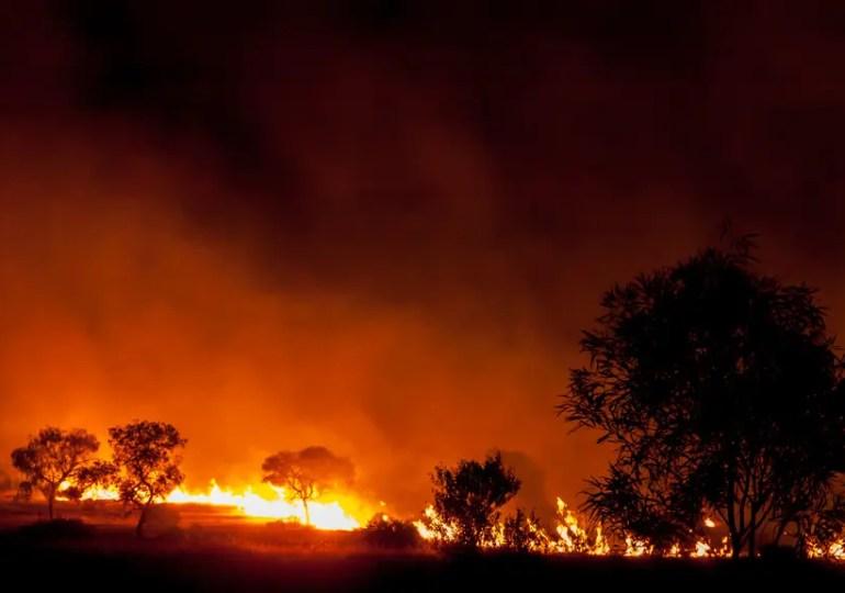 Incendies en Australie: le drame sans fin - la parole aux Français d'Australie