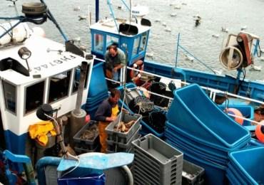 Brexit : pas d'accord commercial sans compromis sur la pêche, avertit Barnier