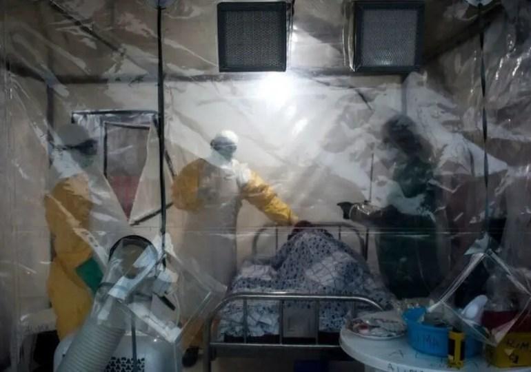 Guinée : d'où vient le virus Marburg