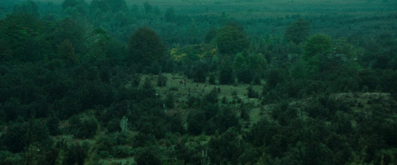 movie_bree land 3
