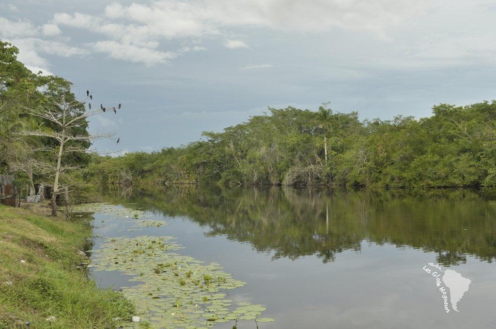Rivière Lamanai, orange walk, Belize