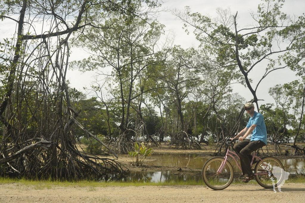 Mangrove Hopkins bélize vélo