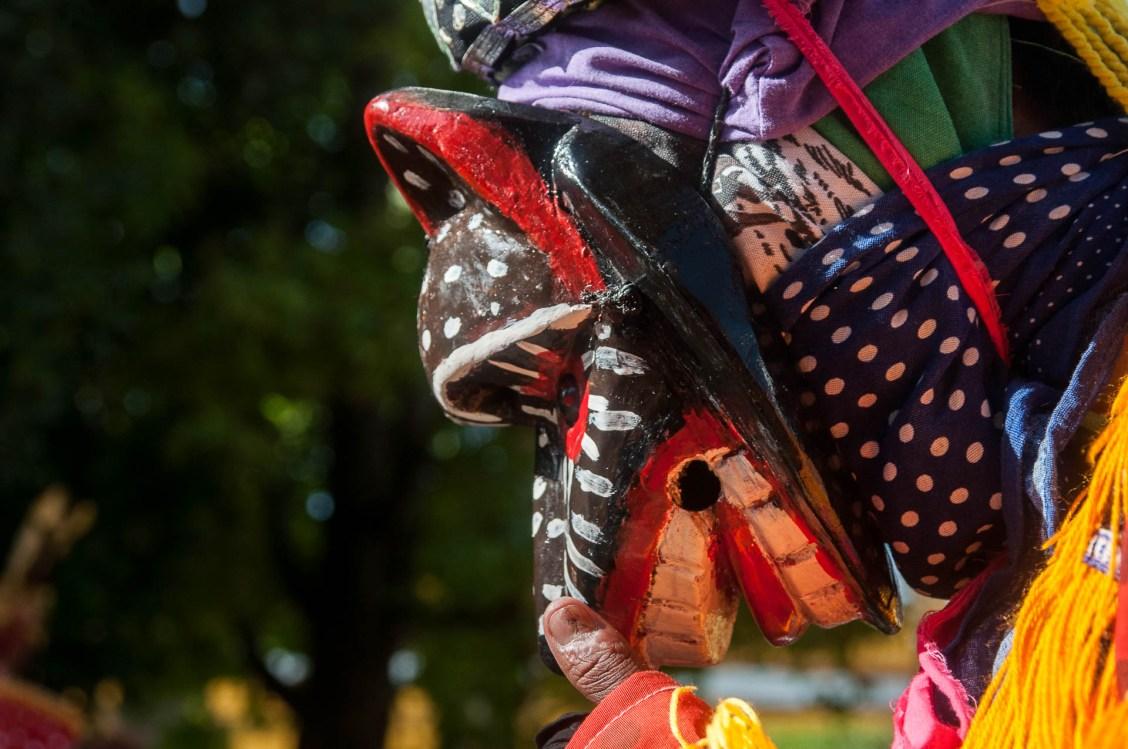 coban masque singe 1