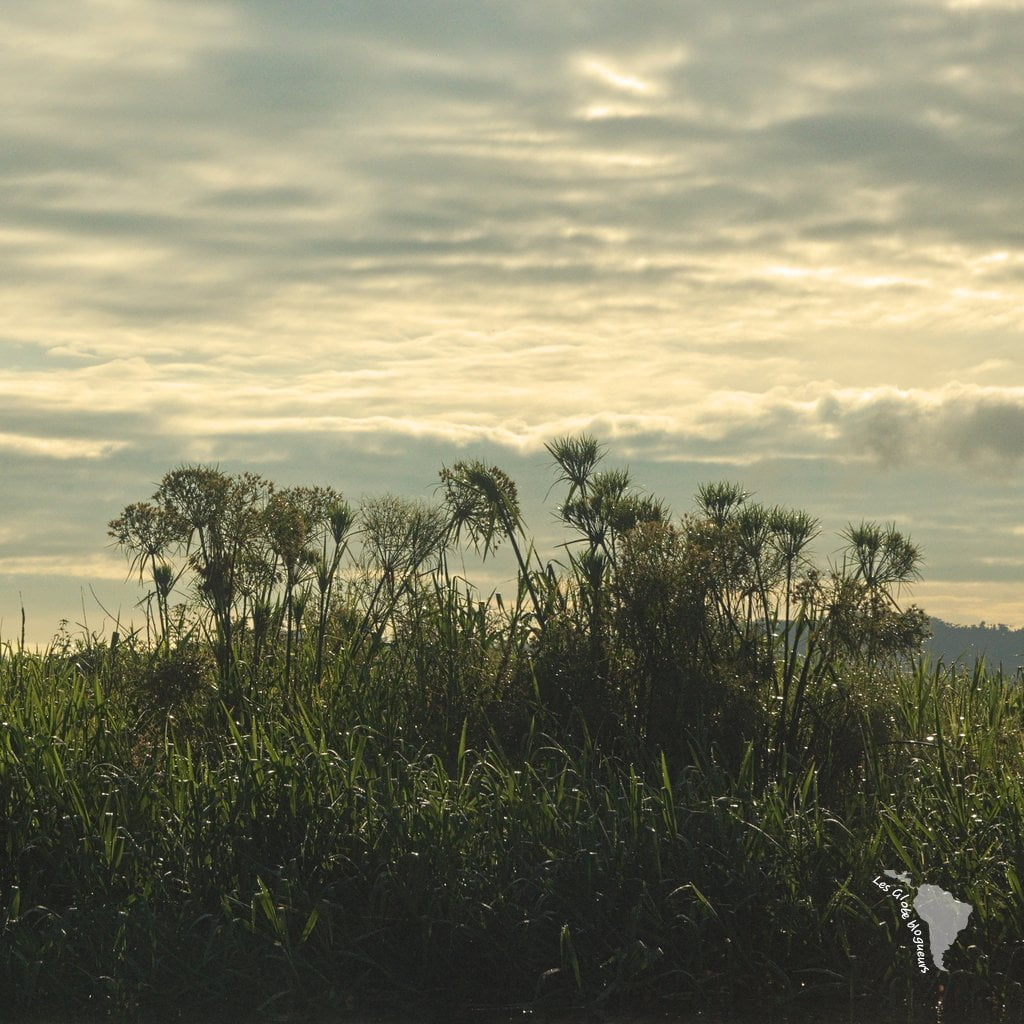 lago yojoa honduras