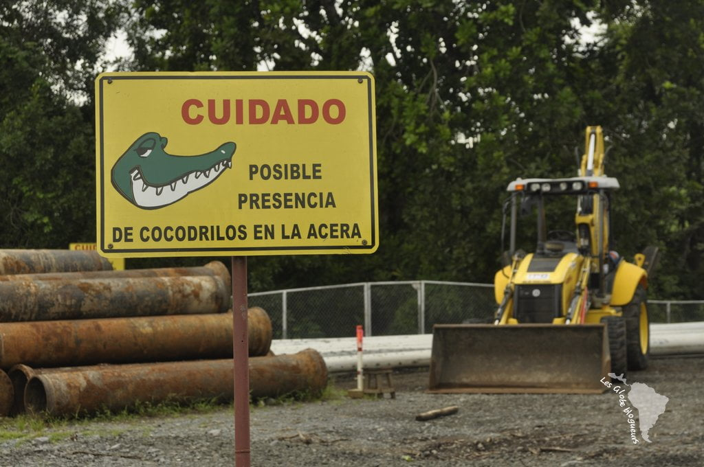 Prêt(e) à risquer de vous faire bouffer par un crocodile pour découvrir le canal de Panama ?
