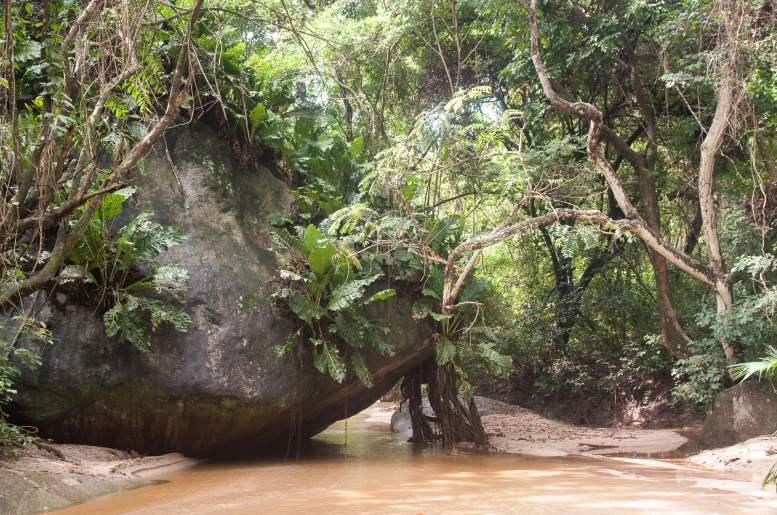 parc tayrona près de santa marta colombie