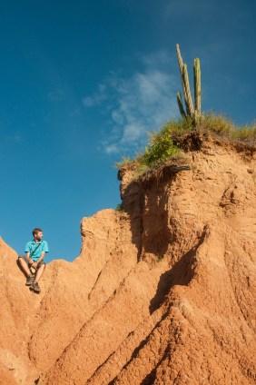 tatacoa seb cactus