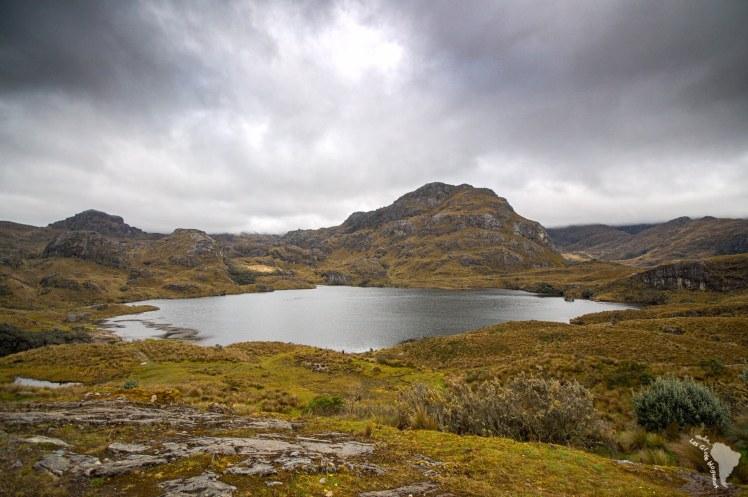 Lagune dans le pac d'El Cajas