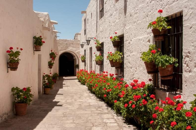Couvent santa catalina rue fleurs
